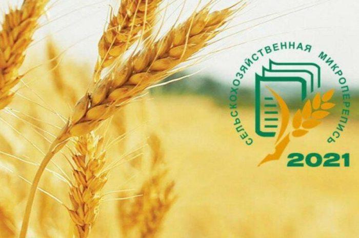 Новоорский район готов к проведению сельскохозяйственной микропереписи